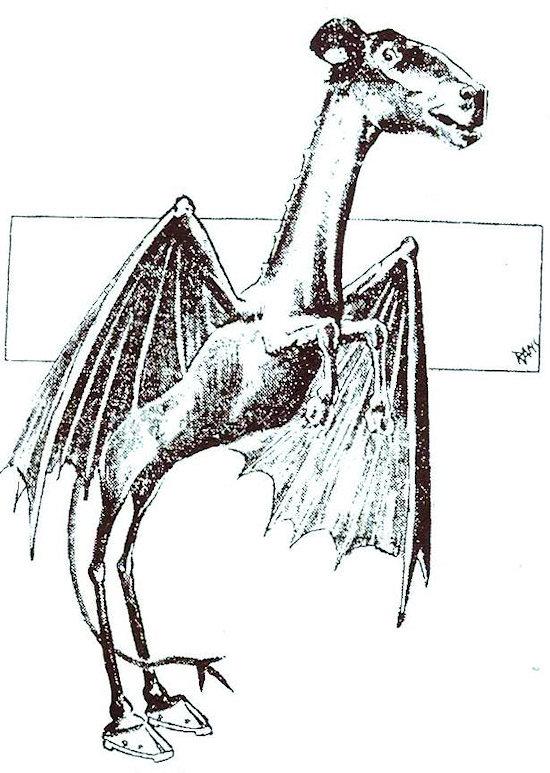 Jerseyn piru kuten Philadelphia Evening Bulletin sen kuvasi