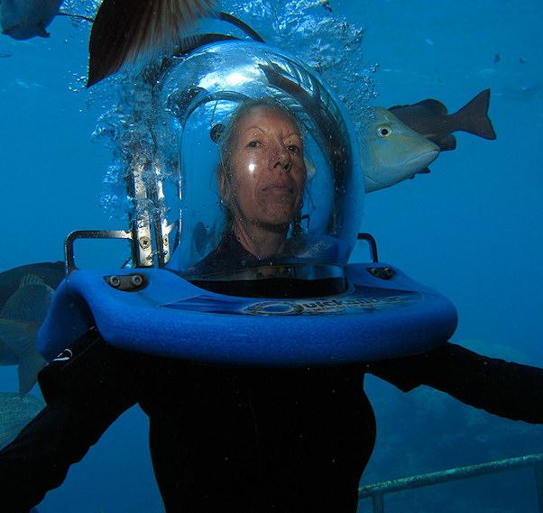 Angel sukeltaa kalojen keskellä | kulkuri.org