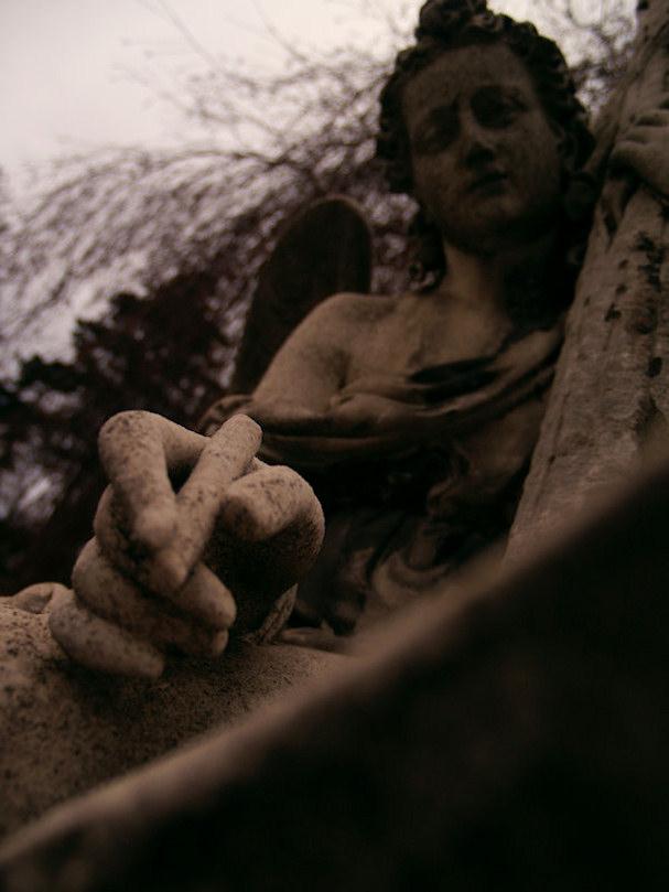 Wienin Keskushautausmaa, enkeli | Sebastian Buchner | Kulkuri.org