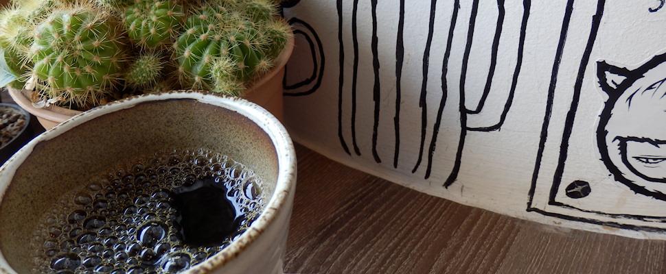 Cafe Drip, Bangkok, piirustuksia seinällä ja kaktus | Kulkuri.org