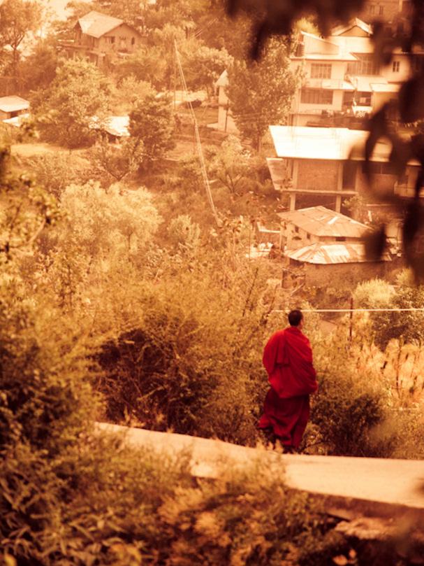 McLedo Ganj, Intia, buddhalaismunkki | Sebastian Buchner | Kulkuri.org