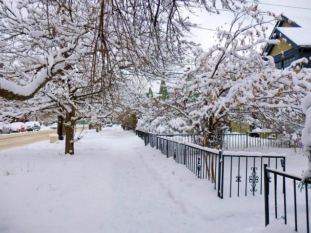 Lunta Denverin katukuvassa - Maija Kauhanen - Kulkuri.org