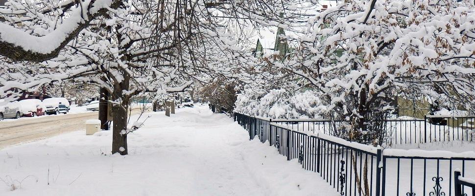 Lunta Denverin kaduille: PANIIKKI - Maija Kauhanen - Kulkuri.org