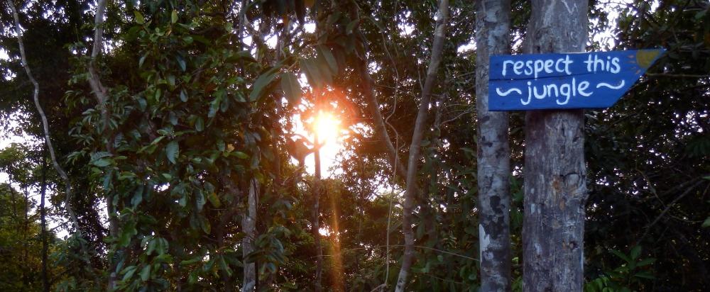 Kunnioita sademetsää, kiitos. Koh Rong, Kambodza - Maija Kauhanen - Kulkuri.org