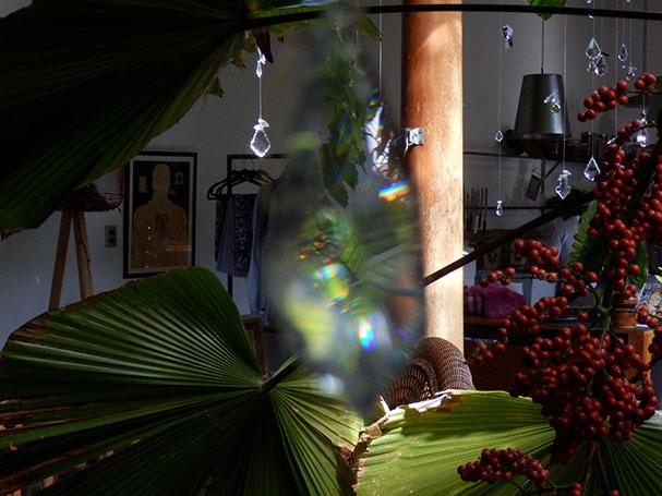 Kristalleja, trooppisia kasveja, nättiä - Maija Kauhanen